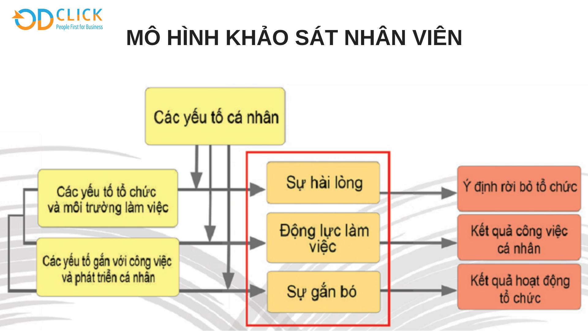3 BƯỚC KHẢO SÁT VÀ PHÂN TÍCH HIỆU QUẢ - Công ty TNHH Tư vấn Quản lý OD Click